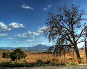 HDR New Mexico Picnic Area (1) by bmooneyatwork