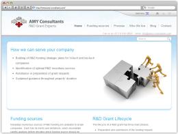 "Сайт компании ""AMY Consultants"""
